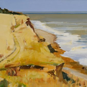 Covehithe Cliffs, Suffolk