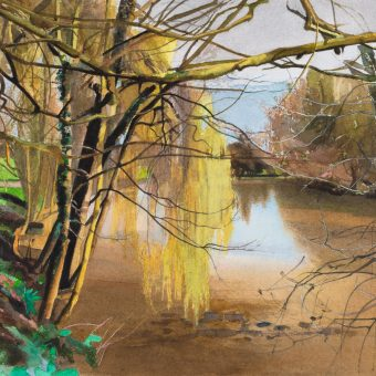 Willow, Spring, River Avon