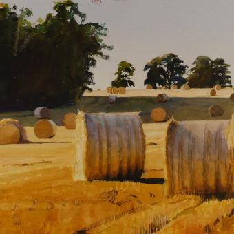 Norfolk Harvest