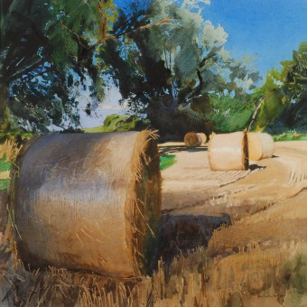 Straw Bales & Willows