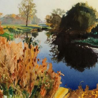 Teasels, River Avon