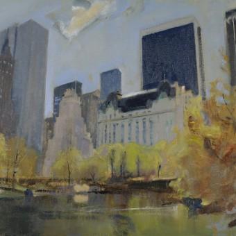 The Pond, Central Park NY
