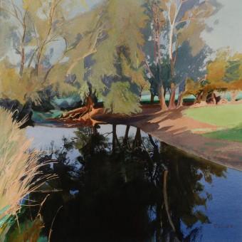 Willows, River Avon