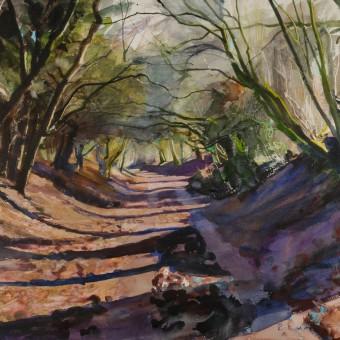 Winter Lane, Wiltshire