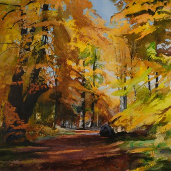 Woodland Path, Savernake
